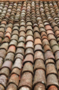Gaspar Avila Framed Prints - Terra cotta roof tiles Framed Print by Gaspar Avila