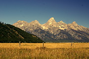 Tetons 3 Print by Marty Koch