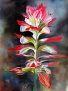 Indian Pastels Prints - Texas Indian Paintbrush Print by Karen Kennedy Chatham
