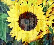 Sunflowers - Textured Sunflower by Cathie Tyler