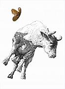 Signed Prints Drawings - Thats alot of bull by Martin Goldman