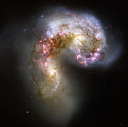 Star Clusters Posters - The Antennae Galaxies Poster by Stocktrek Images