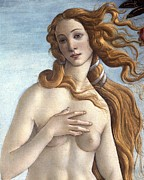Goddess Of Beauty Posters - The Birth of Venus Poster by Sandro Botticelli