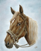 Equine Paintings - The Boss Mount by Cathy Cleveland