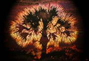 Religious Art Digital Art Prints - The Burning Bush Print by David Lee Thompson