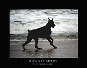 Doberman Framed Prints - The Challenger Framed Print by Rita Kay Adams