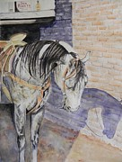 Mexican Horse Paintings - The Don by Dee Elliott