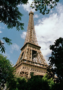 Low Angle View Prints - The Eiffel Tower, Paris Print by Martin Diebel