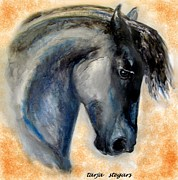 Horse Drawings Framed Prints - The Friesian Framed Print by Tarja Stegars