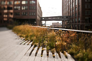 Wooden Building Posters - The High Line Park Poster by Eddy Joaquim