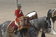 Drummer Photos - The Kettledrums Of Household Cavalry by Andrew Chittock