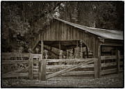 Wooden Barns Framed Prints - The last barn Framed Print by Joan Carroll