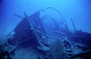 Adversity Photos - The lEspignole shipwreck by Sami Sarkis