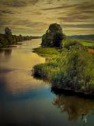 Marshland Posters - The Mondego River Poster by Byron Fli Walker