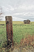 Horse And Buggy Prints - The Old Farm House Print by Steve McKinzie