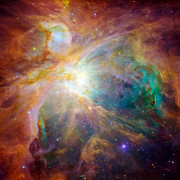 H Ii Regions Prints - The Orion Nebula Print by Stocktrek Images