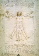 Pen Drawings - The Proportions of the human figure by Leonardo da Vinci