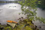 Midsummer Photo Prints - The rowing boat Print by Heiko Koehrer-Wagner