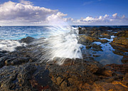 Blowhole Prints - The Sea erupts Print by Mike  Dawson