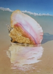 Sea Shell Originals - The Song of the Sea by Vicki Greene
