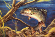 Brown Trout Originals - The Strike by Dian Paura-Chellis