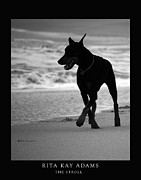 Dog Beach Print Framed Prints - The Stroll Framed Print by Rita Kay Adams