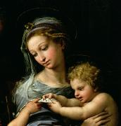 Xmas Painting Posters - The Virgin of the Rose Poster by Raphael