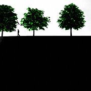 Stefan Kuhn - The Walk
