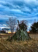 Farm Scenes Art - The Woodstack by Julie Dant