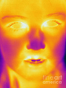Human Being Posters - Thermogram Of A Young Girl Poster by Ted Kinsman
