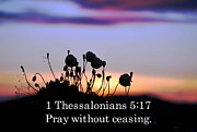 Thessalonians Prints - 1 Thessalonians chapter 5 verse 17 Print by Arlene Rhoda Nanouk