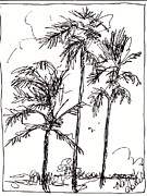 Palm Trees Fronds Originals - Three Amigos by Michele Hollister - for Nancy Asbell