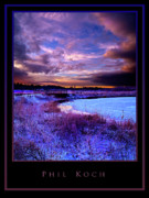 Inspirational Poster Framed Prints - Timeless Framed Print by Phil Koch