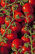 Harvested Metal Prints - Tomatoes Metal Print by Joana Kruse