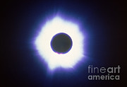 Solar Eclipse Prints - Total Solar Eclipse With Corona Print by Science Source