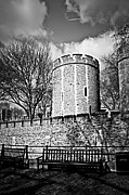 Benches Framed Prints - Tower of London Framed Print by Elena Elisseeva