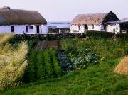 Straw Roof Art - Traditional Cottages, Co Galway, Ireland by The Irish Image Collection