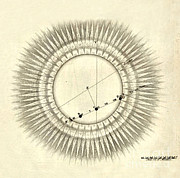 Heavenly Body Art - Transit Of Venus, 1761 by Science Source