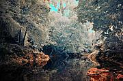Infra Red Prints - Tropical Forest Print by Mario Bennet