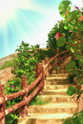 Wooden Stairs Posters - Tropical garden Poster by MotHaiBaPhoto Prints