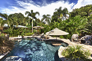Palmetto Plants Photos - Tropical Swimming Pool by Skip Nall