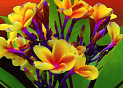 Purple Flowers Digital Art - Tropical Warmth by Stephen Anderson