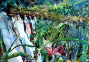 Orchids Drawings - Tropical Waterfall by Mindy Newman