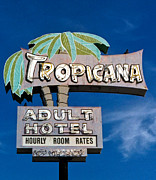Retro Art Prints - Tropicana Print by Matthew Bamberg