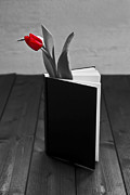 White Tulip Framed Prints - Tulip In A Book Framed Print by Joana Kruse