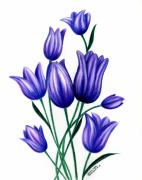 Lavender Drawings Originals - Tulips for Harry by Sharon Blanchard