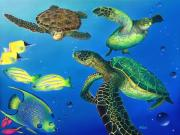 Fish Underwater Paintings - Turtle Towne by Angie Hamlin