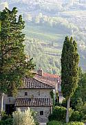 Chianti Framed Prints - Tuscan farmhouse at Villa Vignamaggio Framed Print by Mathew Lodge