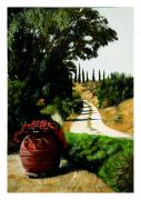 Dirt Road Paintings - Tuscan Summer Road by Matthew Bates