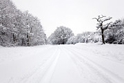 Snowy Road Metal Prints - Tyre tracks in the snow Metal Print by Richard Thomas